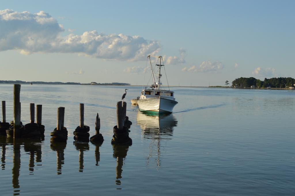 Fishing Creek, MD, at dawn. Photo by Tom Pelton