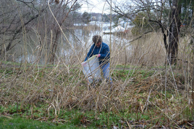 Local sailor Carole Jordan doing her part to clean up her local stream.