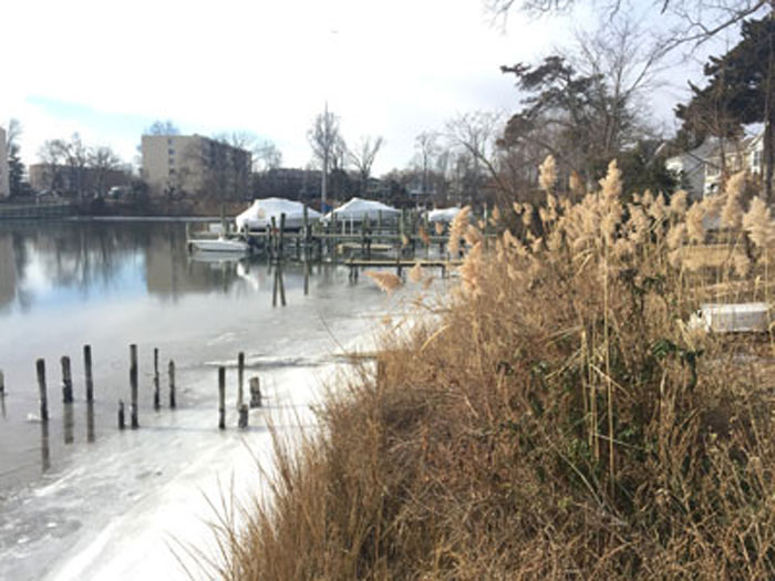 Back Creek in Annapolis January 3, 2018.