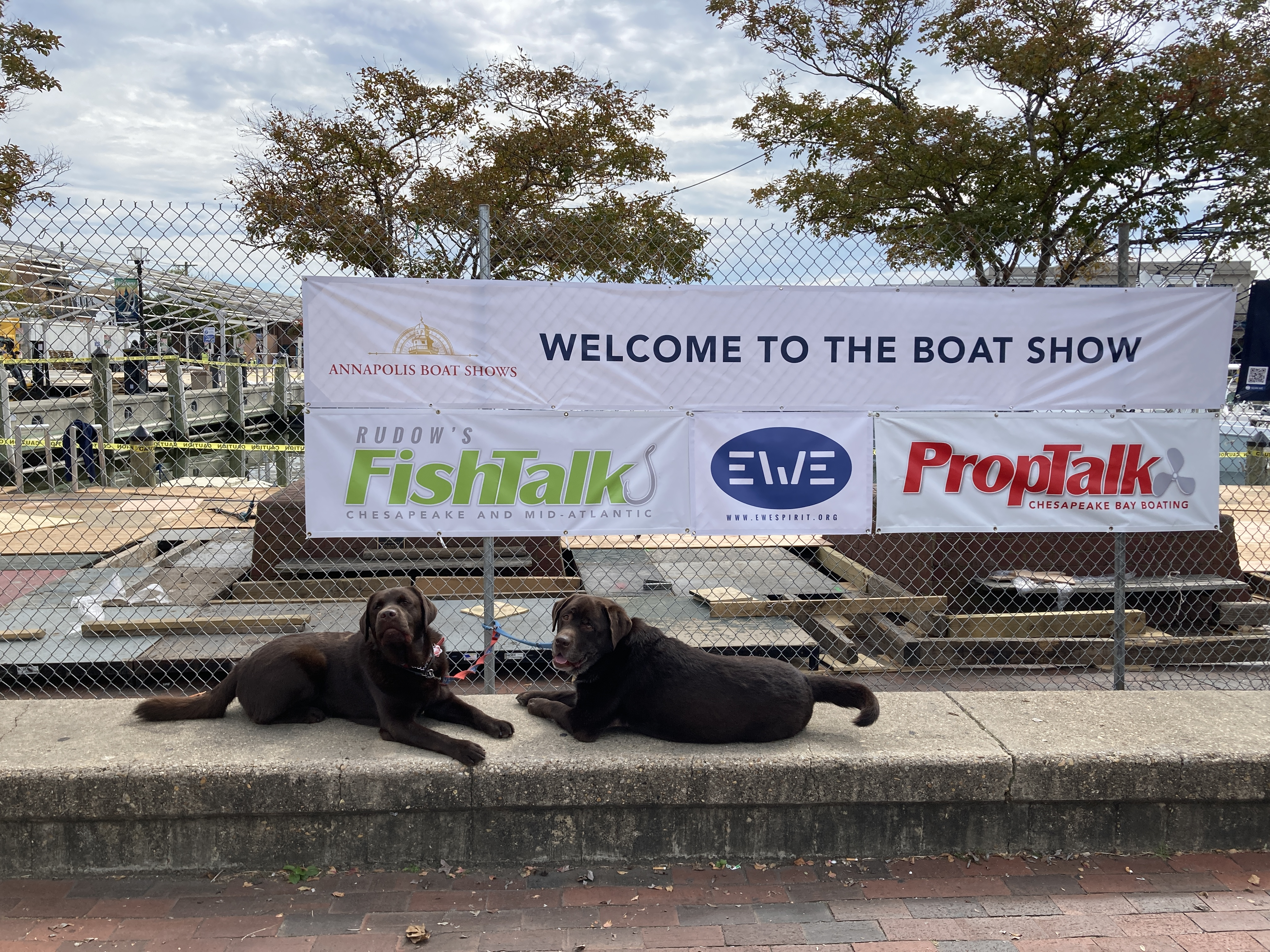 U.S. Sailboat and Powerboat Shows in Annapolis