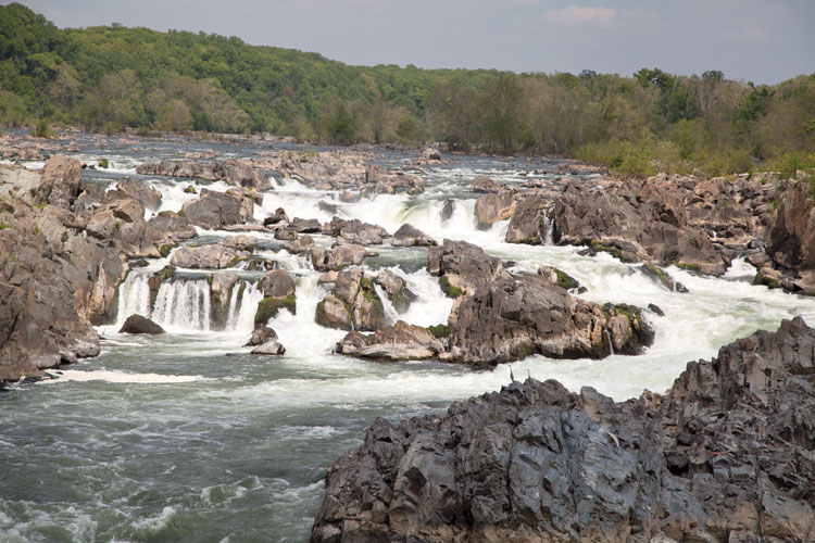 At Great Falls the Potomac River builds up speed and force. Photo by Sarah Hauser, Virginia Tourism Corporation