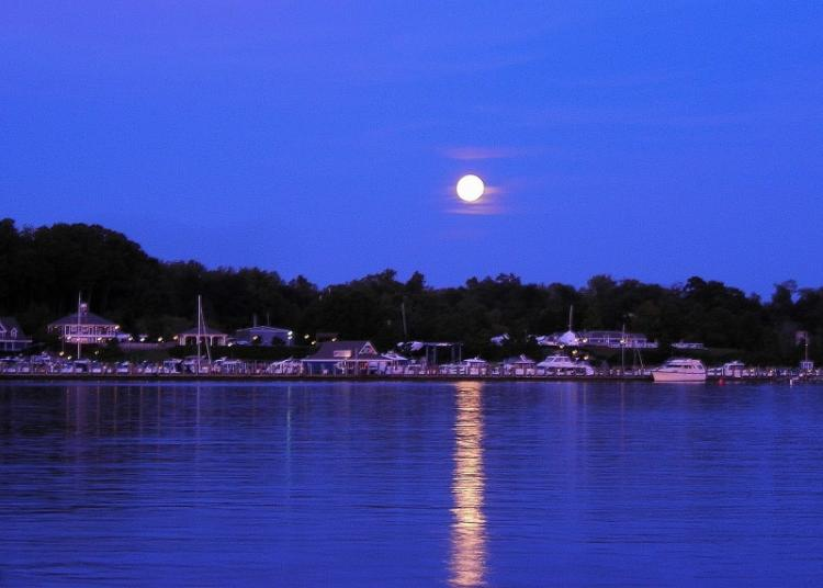 Photo courtesy of Skipjack Cove Marina