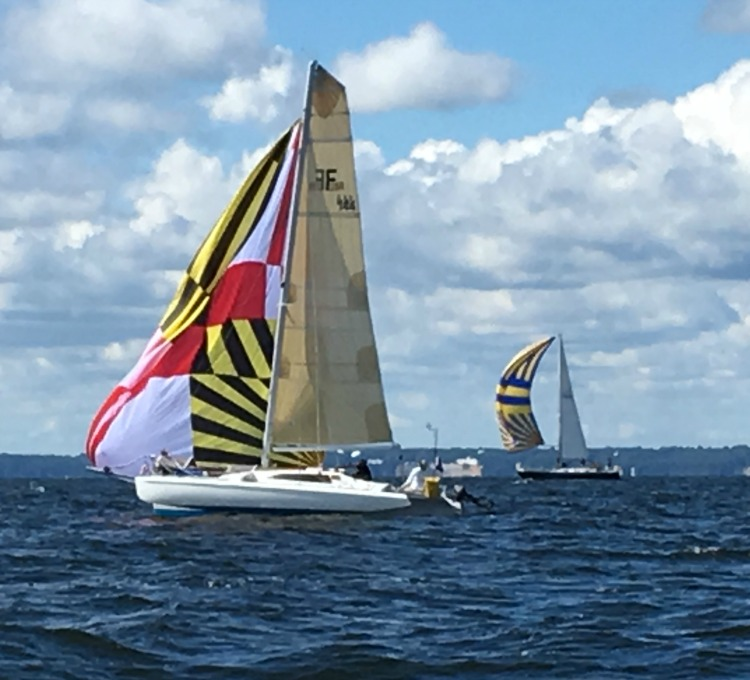 Nice new Maryland flag spinnaker! Photo by SpinSheet
