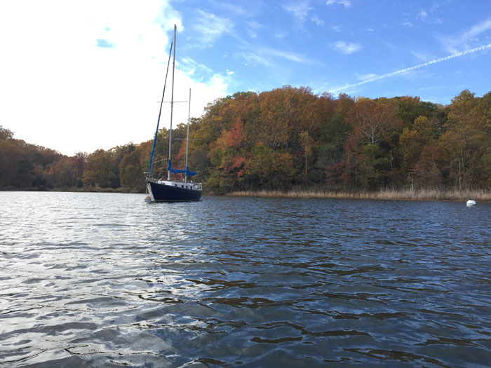 Fall foliage 2017, off the Severn River.