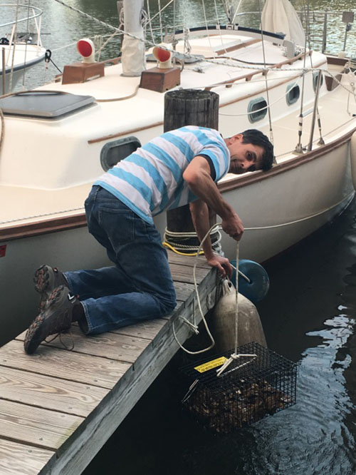 Jordan checks on oyster spat on the finger pier by their sailboat.