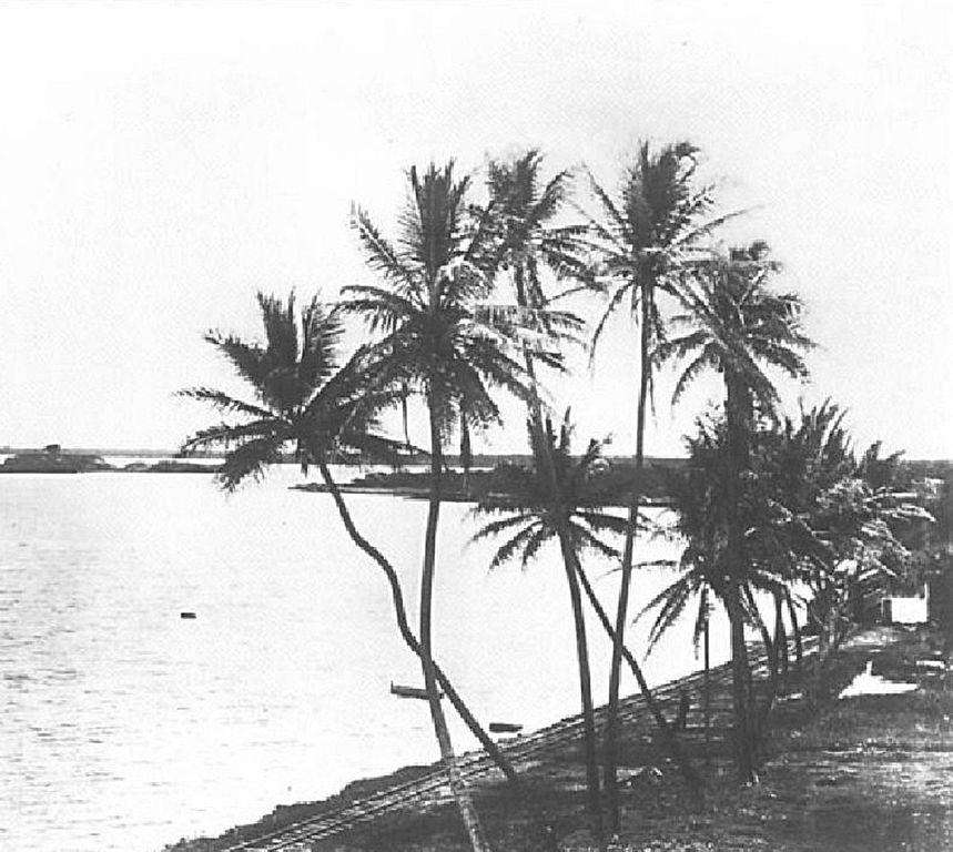 Pearl Harbor in the 1880s. Hawaii State Archives