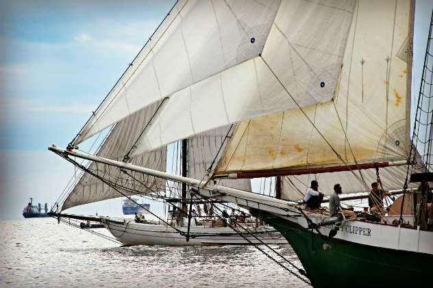 Great Chesapeake Bay Schooner Race 2016 photo by Cindy Wallach