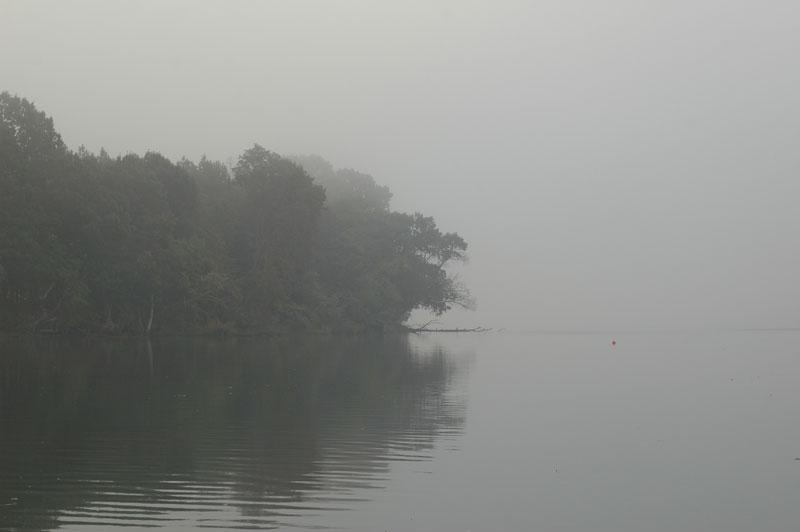 A foggy day at Wye Island on the Wye.